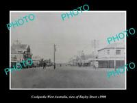 OLD LARGE HISTORIC PHOTO OF COOLGARDIE WEST AUSTRALIA, VIEW OF BAYLEY ST c1900