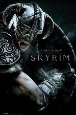 "THE ELDER SCROLLS V: SKYRIM laminated POSTER dragonborn ""LICENSED"" BRAND NEW"