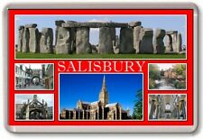 FRIDGE MAGNET - SALISBURY - Large - Wiltshire TOURIST