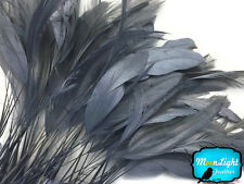 1 Dozen - GREY Stripped Coque Tail Feathers