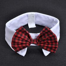 Fun Adorable Dog Cat Pet Puppy Kitten Toy Bow Tie Necktie Collar Clothes Gift FT