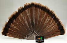 LUCKY DUCK EDGE YOUR BIGGEST FAN DIY TURKEY TAIL FEATHER DECOY MOUNTING KIT NEW