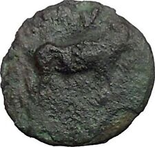 Euobian League in Euboia 272BC Cow Grapes Authentic Ancient Greek Coin i48799