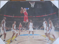 Chicago Bulls DEREK ROSE Canvas Print