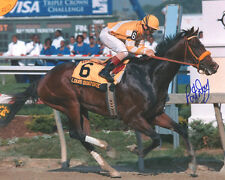 Louis Quatorze 1996 Preakness Stakes Signed 8x10 Photo Pat Day