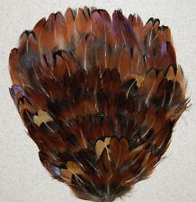ONE FEATHER PAD - Brown Acorn #P05; Headband/Hats/Halloween/Bridal/Burlesque