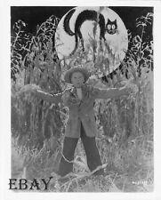 Jackie Cooper Halloween scarecrow VINTAGE Photo