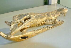 "amazing 36cm Crocodile skull 15"" inches long solid 100% brass large heavy B"