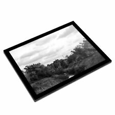 A3 Glass Frame BW - Field Meadow Nature  #38082