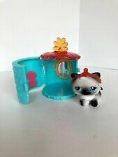 Euc Complete Littlest Pet Shop Portable Pet Persian Cat #60