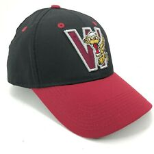 Wisconsin Timber Rattlers Outdoor Cap Adjustable Hat Youth Adult Sizes Red Black