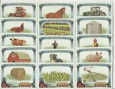 2020 Topps Allen & Ginter Down On The Farm Insert Set (15 Cards) Cow-Dog-Horse+