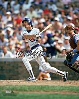 "Ryne Sandberg Chicago Cubs Autographed 16"" x 20"" Hitting Photograph"