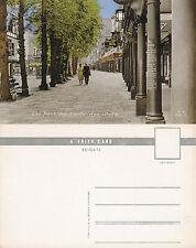1960's THE PANTILES TUNBRIDGE WELLS KENT UNUSED COLOUR POSTCARD