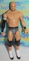 WWE Cesaro Mattel Basic Wrestling Action Figure Series B