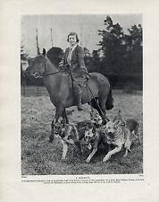 GERMAN SHEPHERD DOGS AND LADY ON HORSEBACK ORIGINAL DOG PRINT FROM 1934