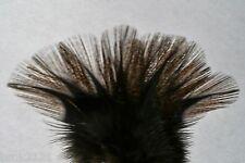12 PLUMES PARDO RINON encendido grade 2 mouche flies fly mosca