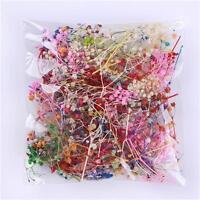 10PCS Dried Babysbreath Nail Art Decoration Preserved Little Star Flower 3D DIY