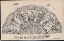France Postcard - Souvenir De Steenbecque     T1681