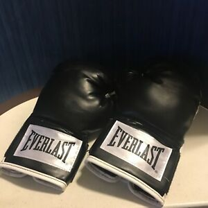 Everlast 2912BT 12 oz Advanced Boxing Gloves Heavy Bag Mitt workout