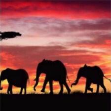 5D Full Drill Diamond Painting Rhinestone Three Elephants Craft Art Souvenir