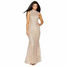 52ee1434fed Quiz Sequins Dresses for Women | eBay