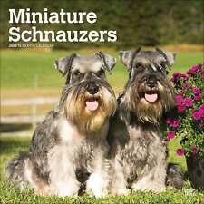 Schnauzers Miniature International Calendar 2020