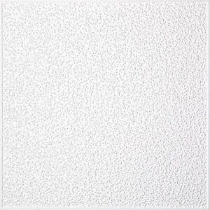 22m² Styroporplatten Deckenplatten Feinputz (2,68€/m²)