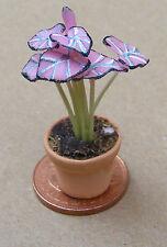 1.12 échelle rose plante dans un pot maison de poupées miniature jardin fleurs accessoire P6