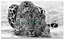Black White Animal Canvas Wall Art Abstract Leopard Prints Picture Decorative