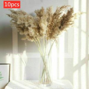 10X Natural Dried Pampas Grass Reed Flower Bunch Wedding Bouquet Decor