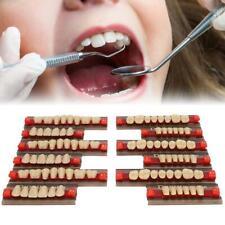 Denti per protesi in resina acrilica 1BOX VITA Color A3Color Upper Lower Shade