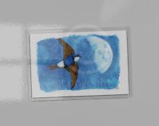 House Martin art picture magnet. Acrylic magnet contains print. 9.5cm x 6.5cm