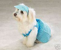 Dog M GINGHAM Dress Pet Clothes Clothing MEDIUM Blue
