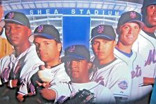 BASEBALL~ METS~2005 TRIFOLD BOOK  +25 PC PIN COLLECTION SPORTS ENTHUSIAST GIFT