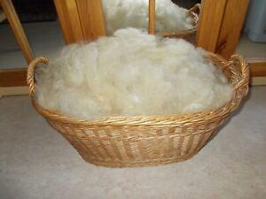 Langhaarige Merino Schafwolle Spinnwolle gereinigt+gezupft Schurwolle 500 g hell