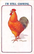 POSTCARD  COMIC   COCKEREL    Related   I'm  still  crowing     Reg  Maurice