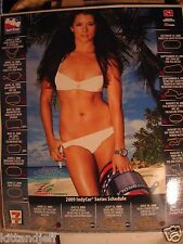 Rare Danica Patrick SI Window cling camel toe swimsuit hot photo poster new
