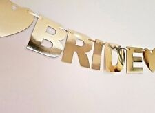 Bride To Be Hen Do Party Mirror Bunting Banner Garland Decoration (see all pics)