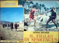 fotobusta 1962 IL FIGLIO DI SPARTACUS-Steve Reeves-Jaques Sernas-Claudio Gora-1