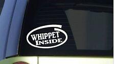 "Whippet Inside *I273* 8"" wide Sticker decal dog dog racing muzzle greyhound"