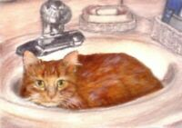 BCB Orange Tabby Cat in the Sink Print of Painting ACEO 2 1/2 x 3 1/2 Inches