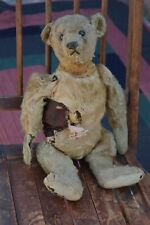 "Antique early 1900's Steiff teddy bear, survivor, black button eyes, 18"""