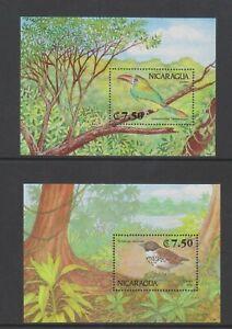 Nicaragua - 1991, Birds sheets x 2 - MNH - SG MS3182