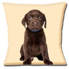 "Chocolate Labrador Puppy Dog Cushion Cover 16""x16"" 40cm Lab Wearing Blue Collar"