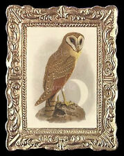 Owl Miniature Dollhouse Doll Houses Picture