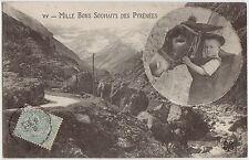 CPA -64- Mille bons souhaits des Pyrénées. ( avec âne )