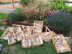 Beautiful Brand new Bespoke hand made gardeners wooden trug 12 x 9 x 11 inch