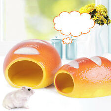 New listing Summer Cute Ceramic Hamster House Sleeping Bed Habitat Cage for Gerbils