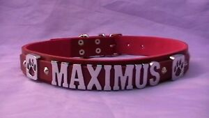 high quality personalised dog collar real leather  any name or colour boxer